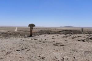 47durch Namib-Naukluft
