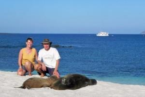 13 Seelöwe und wir