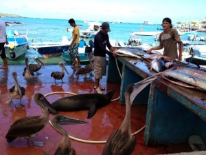 2 Fischmarkt