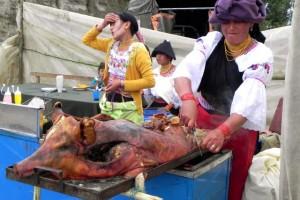 9 Schwein