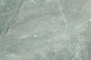 75 Nazca-Kolibri