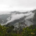 6 runter ins Amazonas-Tiefland