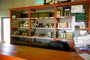 16Olivenölfabrik