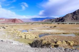 Wüsten-Landschaft