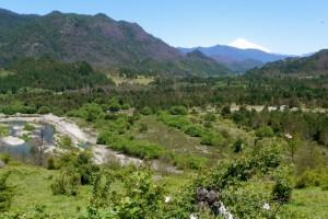 12Vulkanlandschaft bei Pucon