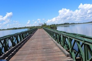 Estero del Ibera