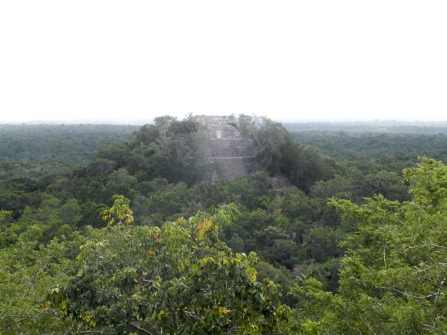 calakmul-pyramide