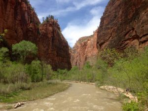 Narrows im Zion