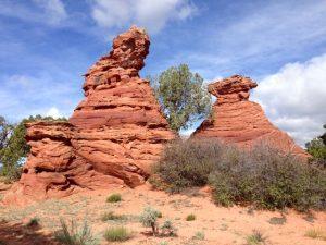 kuriose Felsformen auf dem Weg zur White Pocket